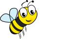 INFOS zur Insektenbekämpfung